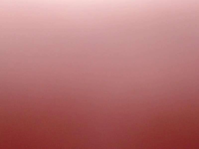 profiel foto van ivonna