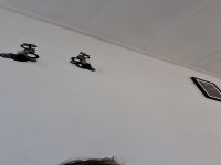 Nu live hete webcamsex met Hollandse amateur lekkersexx?