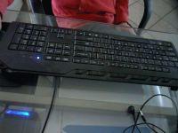 Lekker webcam sexchatten met hakl  uit Flevoland