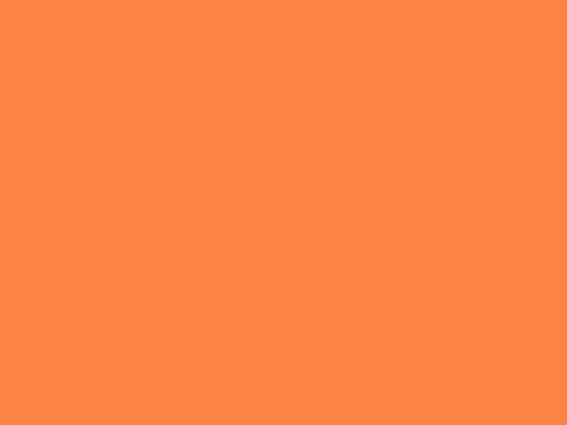 Afbeelding ladybakardi